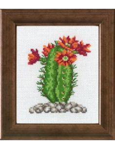 Broderi Kaktus 10x12cm