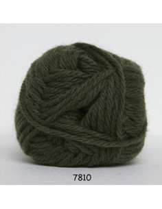 Ragg 50g 7810 Grön